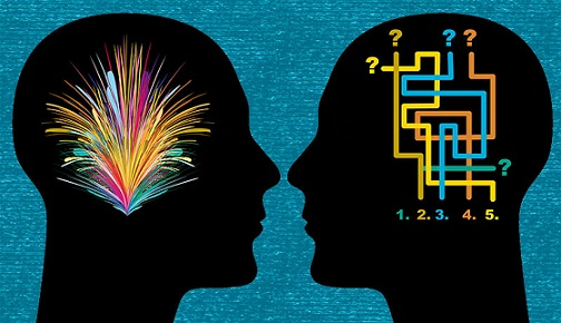 Male And Female Brains Are Different  >> Are Brains Different For Males And Females